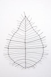 Small Leaf